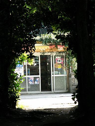 フク木の道2.jpg