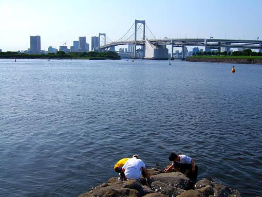 お台場海浜公園2.jpg