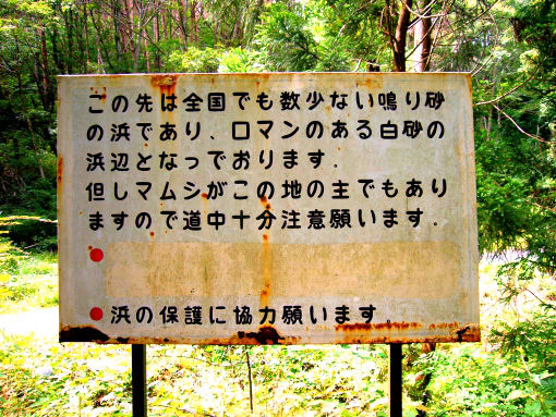 気仙沼11-3.jpg