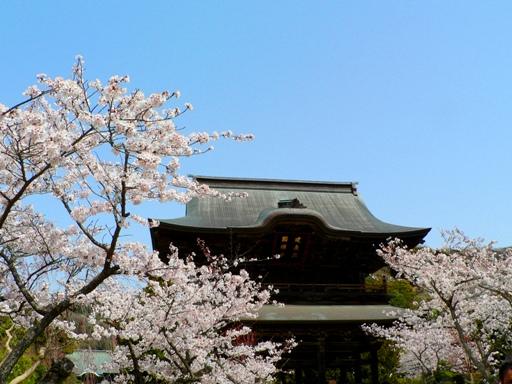 鎌倉4月1日.JPG