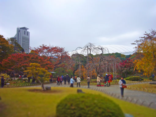 小石川後楽園.jpg