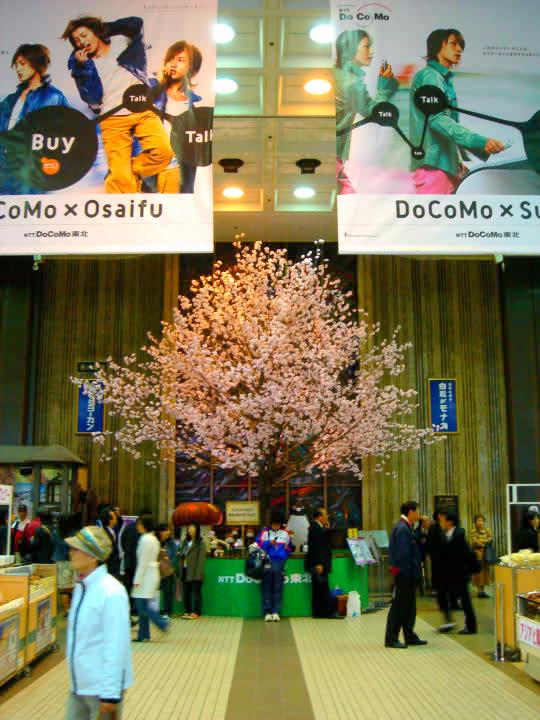仙台駅の桜.jpg