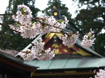 Shinto_shrine