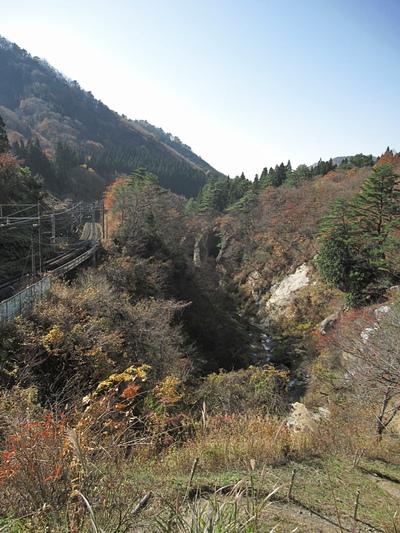 Momijigawa2