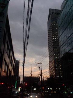 明日は台風一過。たぶん
