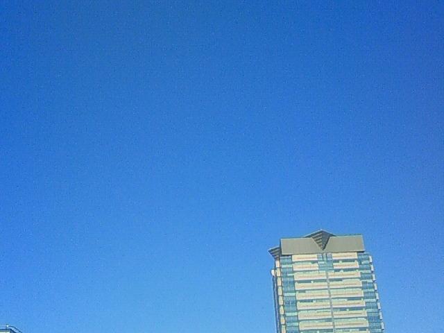 今日も青空が広がってます