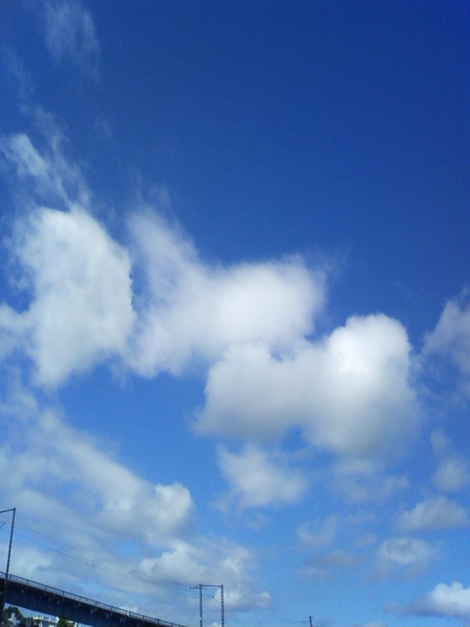 久しぶりの太陽、久しぶりの青空。