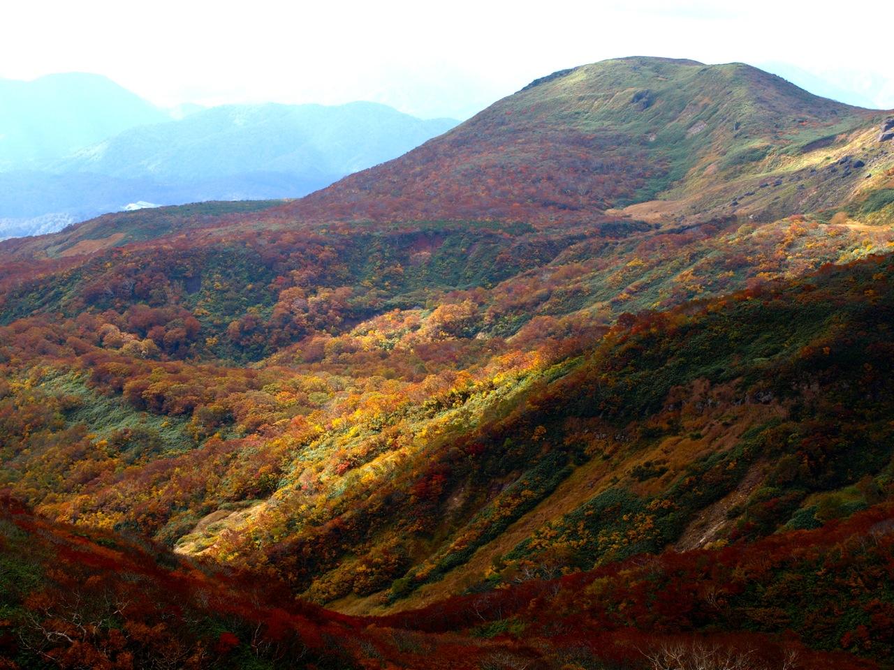 20121021_kurikoma02