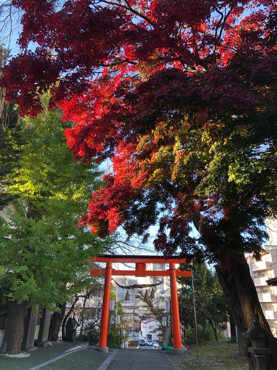 神社の赤。